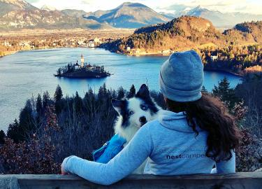 Traveler with a dog looking at Lake Bled