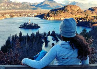 Looking at Lake Bled with a dog